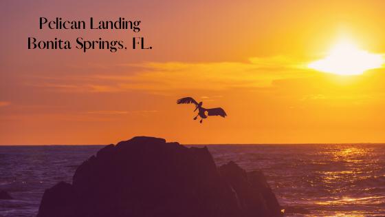 Pelican Landing - Bonita Springs, FL.