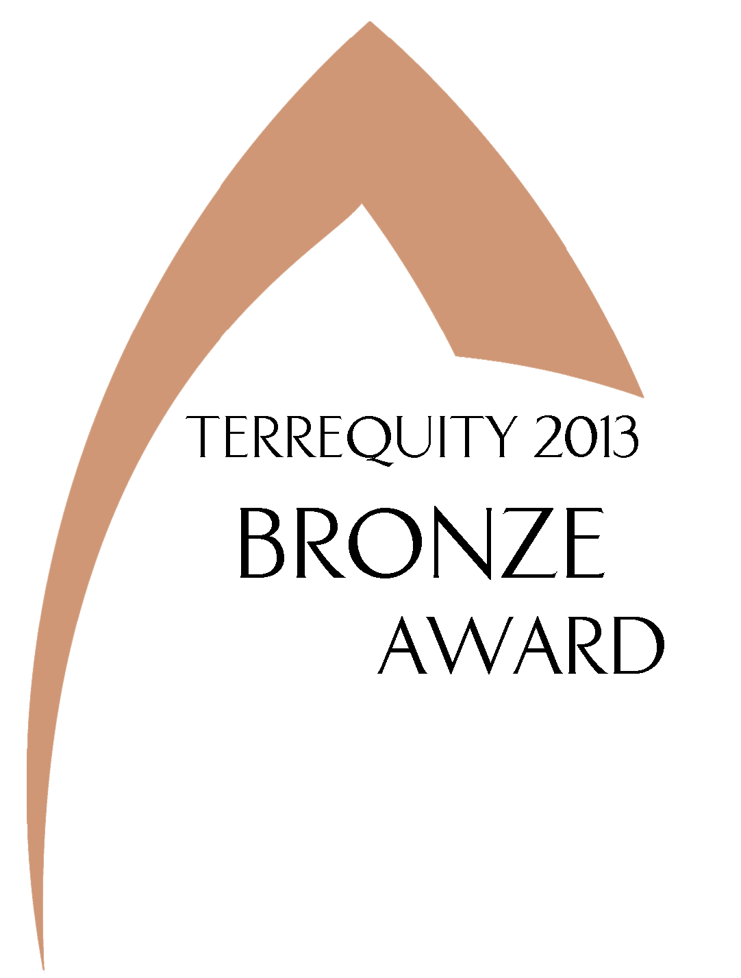 2013 TRI AWARD_Bronze_Cropped.png